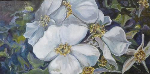 white-wildflowers