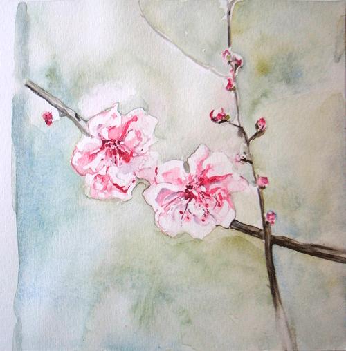 blossom-watercolour