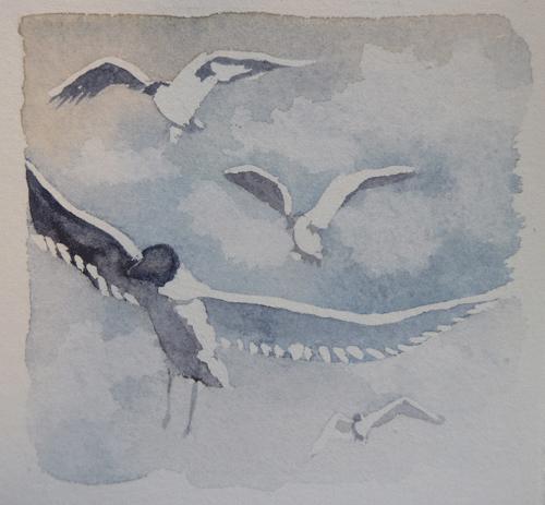watercolour-birds